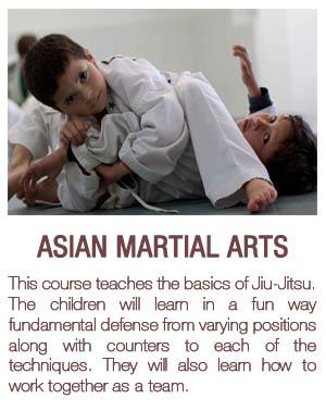 Jiu – Jitsu
